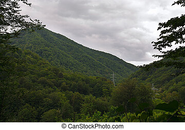 Approaching storm over the wooded mountains in summer -...