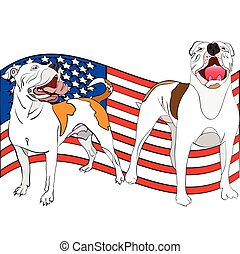 a couple of american bulldogs in front of a waving american...
