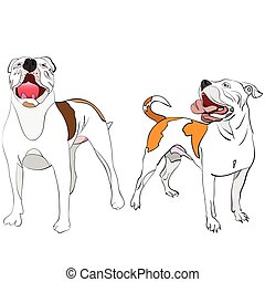 a couple of american bulldogs - hand-drawn, outlined vector...