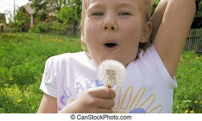 Smiley little girl blows off dandelion and laughs