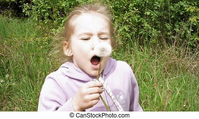 Smiley little girl blows off dandelion and laughs - Smiley...