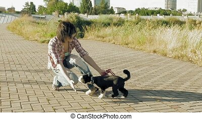 Young woman playing with little cute dog outdoors - Young...