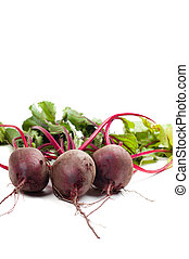 Beet - Shot of young beet isolated on white