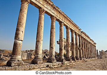 Apamea columns Syria - Historic remains of the Cardo maximus...