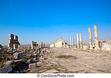 Apamea old street Syria - Historic remains of the Cardo...