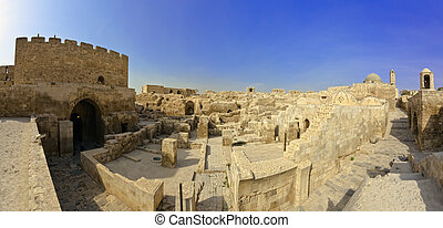 Citadel Aleppo Syria - Famous old fortess Citadel before the...