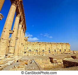 Palmyra Bel Temple Syria - Ancient Palmyra ruins of the...