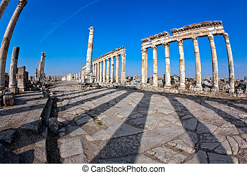 Apamea shadows Syria - Historic remains of the Cardo maximus...
