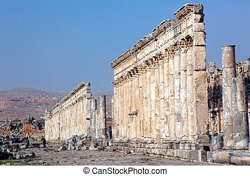 Apamea street columns Syria - Historic remains of the Cardo...