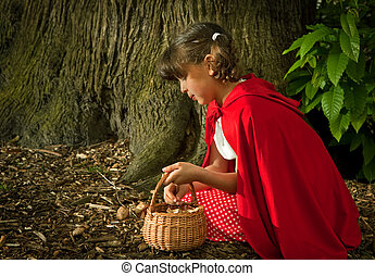 Picking fungi in the forest - Little red riding hood picking...