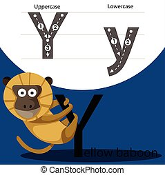 Illustrator of yellow baboon with y font