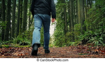 Man Walks On Path Through The Forest - Dolly shot of man...