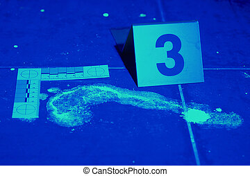 Developing of blood stains and footprints with UV light -...