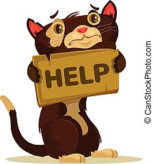 Cat character need home and help. Vector flat cartoon illustration