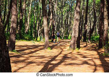 A couple jogging - LIENCRES DUNES, SPAIN - AUGUST, 21: A...