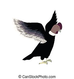 condor animal bird icon with opened wings vector...