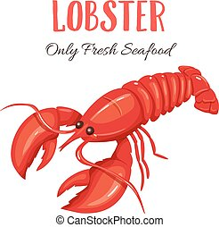 Lobster vector illustration in cartoon style. Seafood...