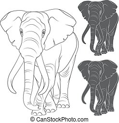 Set of vector illustrations with the elephant. Isolated...