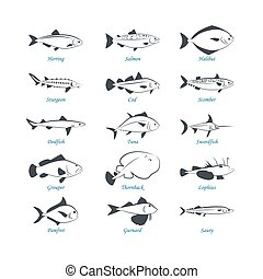 Seafood icons. Fish icons. Can be used for restaurants, menu...