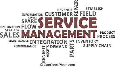 word cloud - service management