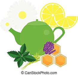 Teapot with herbals and fruits. Green Tea kettle vector...