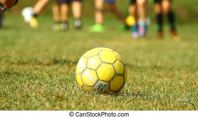 Soccer ball on the grass and training young players