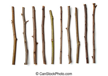Row of dry wooden twigs isolated on white