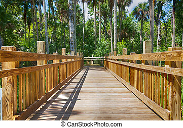 Elevated wooden bridge - Elevated wooden walkway bridge over...