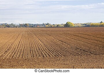 Agircutural field with brown soil