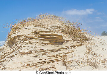 Sand structure done by wind with blue sky in background -...