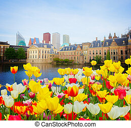 Den Haag, Netherlands - city center of Den Haag - old and...