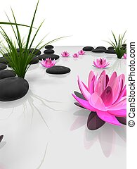 wellness - 3d rendered illustration of lotus flowers, grass...