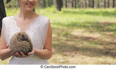 Nice hedgehog in bride hands on photosession in wedding day...