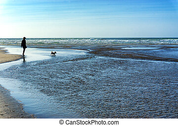 Silhouettes on the Beach - Silhouette of a woman and a dog...
