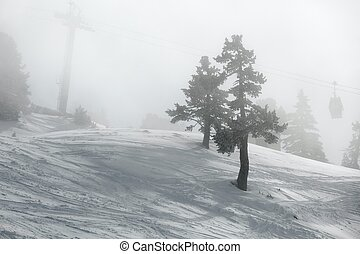 Skiing slopes in fog - Ski slopes in thick fog, low...