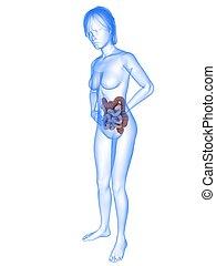 bellyache illustration - 3d rendered illustration of a...