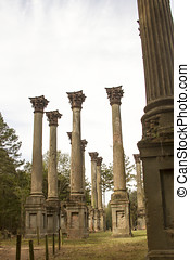 Windsor Ruins in Mississippi - Details of architecture in...
