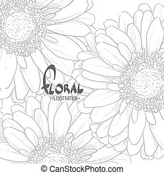Gerbera on white background - Gerbera drawn in pencil with a...
