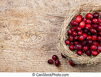 Cranberry nest - Birds nest filled with fresh red...
