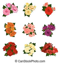 Collection of vector high detailed realistic rose flowers on white background