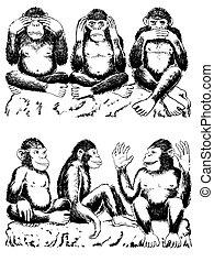 See no evil, hear no evil, speak no evil with variation
