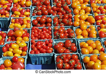 Small red orange and yellow tomatoes - Many pints of small...