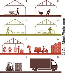 Agricultural process in greenhouse. - Pictogram icon set...