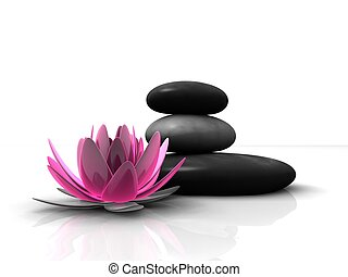 wellness - 3d rendered illustration of a lotus flower and...