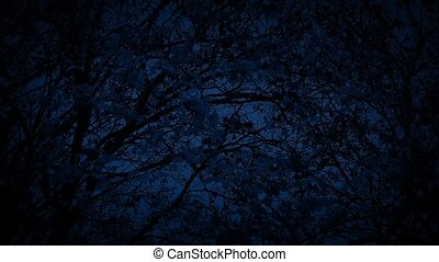 Tree In Breeze At Night - Leaves rustling on tree branches...