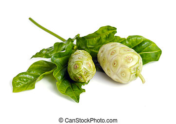 Noni exotic tropical fruit isolated on the white - Noni...
