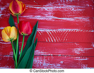 Three tulips on a red wooden background