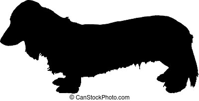 silhouette of miniature dachshund - silhouette of miniature...