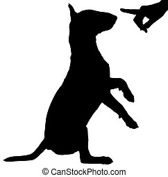 bad dog - silhouette of persons hand reprimanding a naughty...