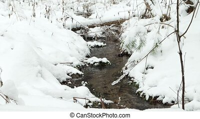 Stream in the winter forest. Russia